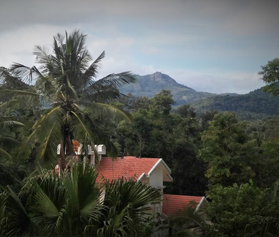 Best Accommodation in Chikmagalur